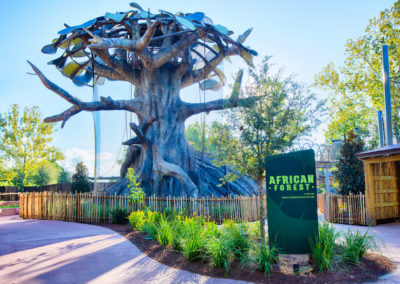 Jacksonville Zoo African Forest Exhibit